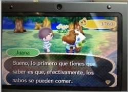 Enlace a Sigue los consejos que te den en Animal Crossing
