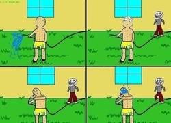 Enlace a Riesgos de regar el patio con un troll en casa