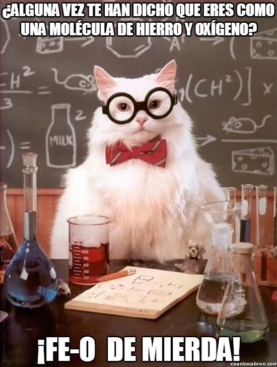 Gato_quimico - ¿Alguna vez te han dicho que eres como una molécula de Hierro y Oxígeno?