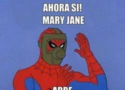 Enlace a Los defectos de Mary Jane