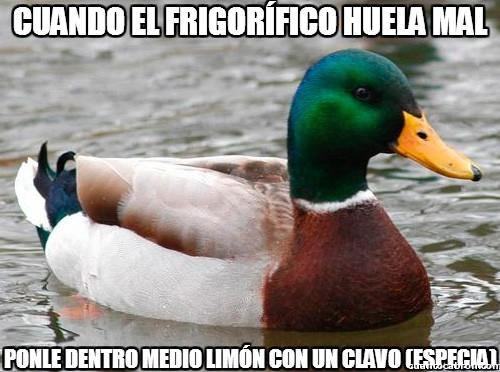 Pato_consejero - Cuando el frigorífico huela mal
