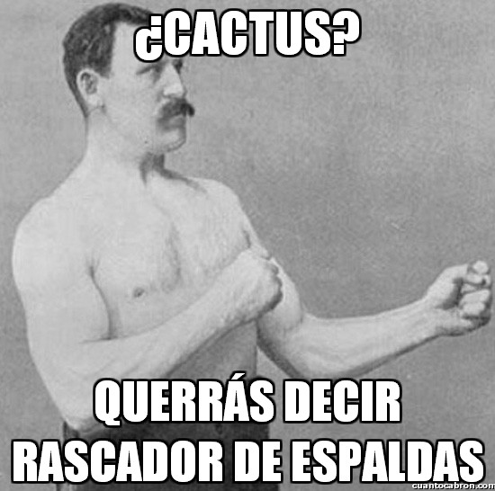 Overly_manly_man - ¿Cactus?