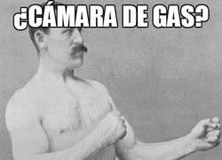 Enlace a ¿Cámara de gas?