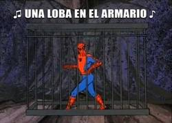 Enlace a Spiderman a lo Shakira