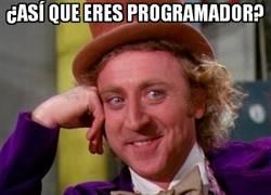 Enlace a ¿Así que eres programador?