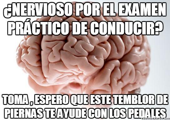 Cerebro_troll - ¿Nervioso por el examen práctico de conducir?