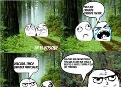 Enlace a Perderte en el bosque y acabar liándola parda