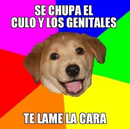 Meme_otros - Se chupa los genitales