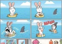 Enlace a Es más difícil trollear cuando eres un conejo