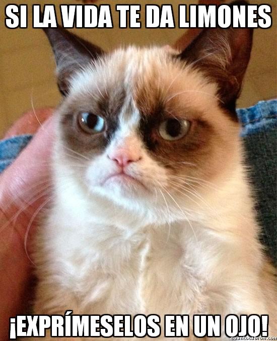 Grumpy_cat - Si la vida te da limones