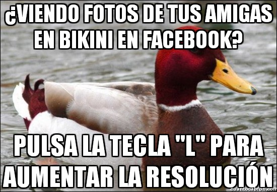 Pato_mal_consejero - Seguro que mejorará tu experiencia viendo fotos