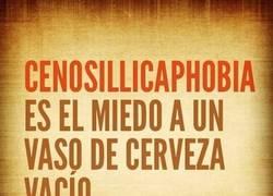 Enlace a Cenosillicaphobia