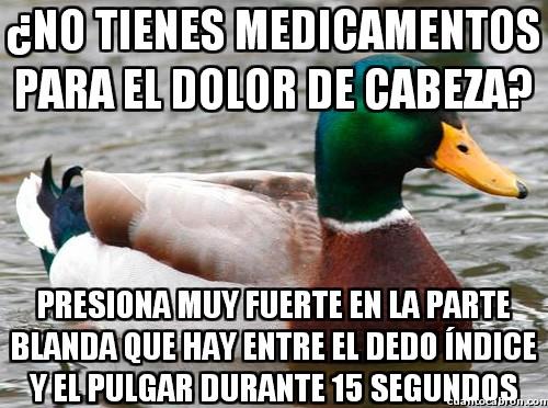 Pato_consejero - ¿No tienes medicamentos para el dolor de cabeza?