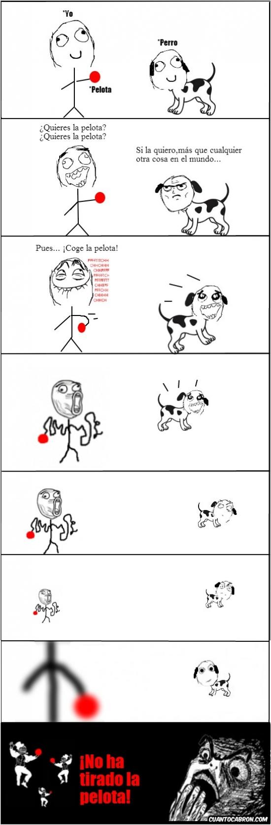 engañar,lol,pelota,perro,tirar,troll