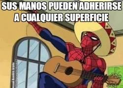 Enlace a Después de tantos años de superhéroe, Spiderman ha descubierto una nueva vocación
