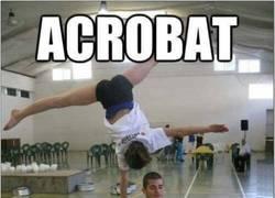 Enlace a Acrobat Reader