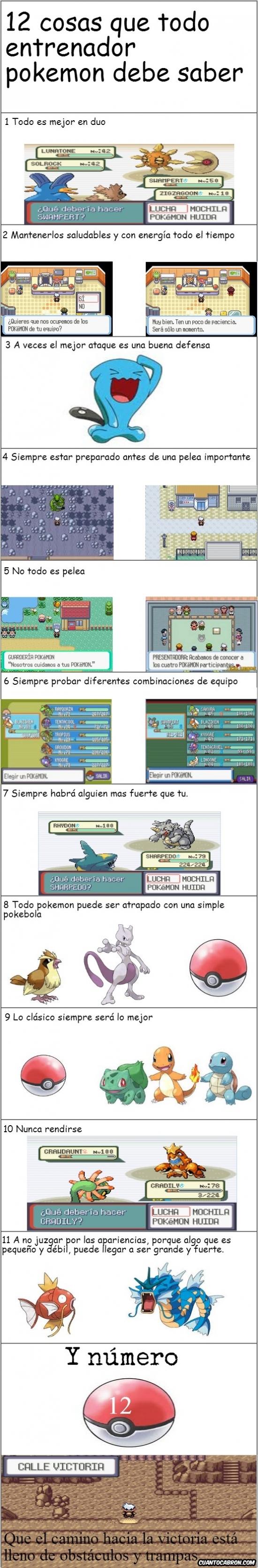 Conocer,Cosas,Entrenador,Pokemon
