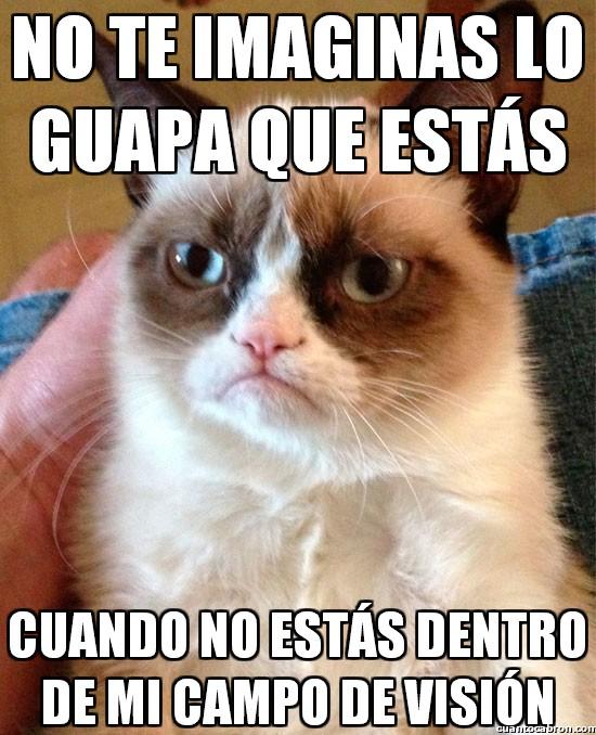 Grumpy_cat - ¡Esto sí es un piropo!