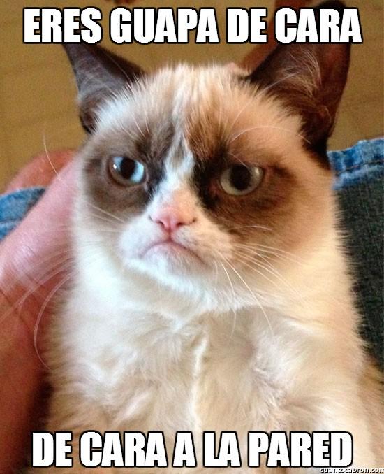 Grumpy_cat - Eres guapa de cara