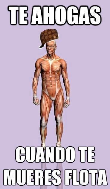 Scumbag_steve - Incoherencias del cuerpo humano