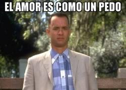 Enlace a Forrest te explica cómo es el amor