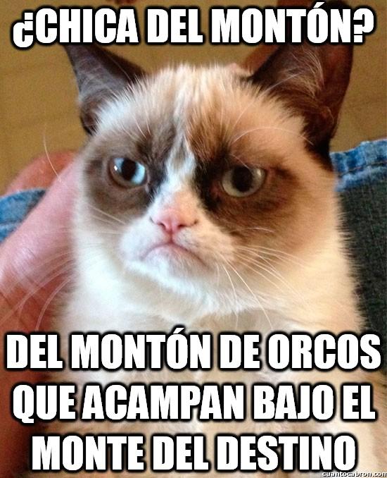 Grumpy_cat - ¿Chica del montón?