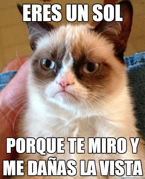 Grumpy_cat - ¡Eres un sol!