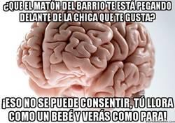 Enlace a El cerebro sabe como hacer frente a los matones de turno