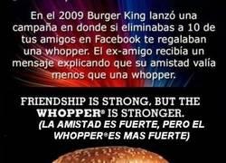 Enlace a Por ese motivo todos tenemos un amigo Forever Alone
