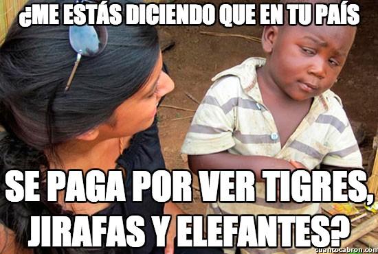 Esceptico_nino_negro - Tigres, jirafas y elefantes