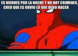 Enlace a Spiderman aprovechando su tiempo libre