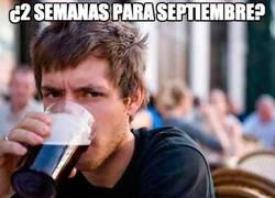 Enlace a ¿2 semanas para septiembre?