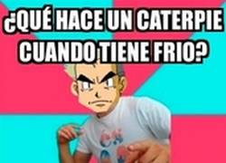 Enlace a Bad Joke Oak