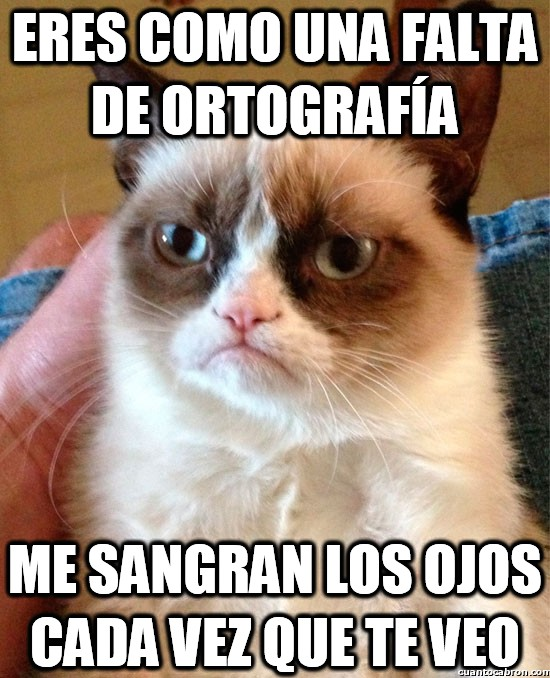 Grumpy_cat - Eres como una falta de ortografía