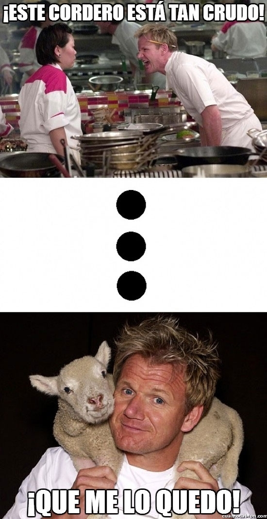borreguito,Chef,cordero,Gordon Ramsey,mascota