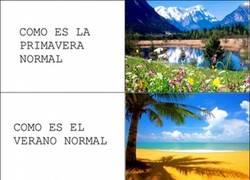 Enlace a El año en Canarias