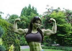 Enlace a Hulk tiene sus ventajas