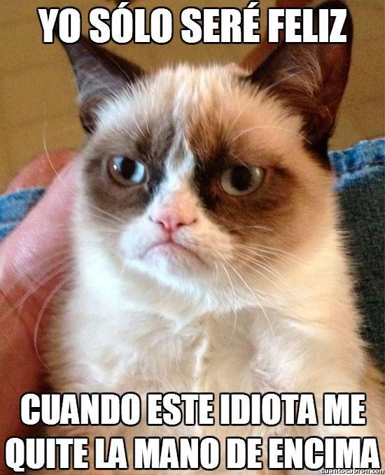 Grumpy_cat - ¿De qué depende la felicidad de Grumpy?