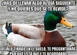 Enlace a El Pato Consejero no Siempre es fiable...