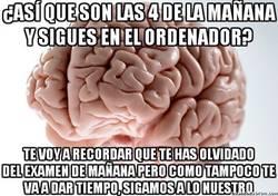Enlace a Yo no soy irresponsable, es mi cerebro que no me da otra opción