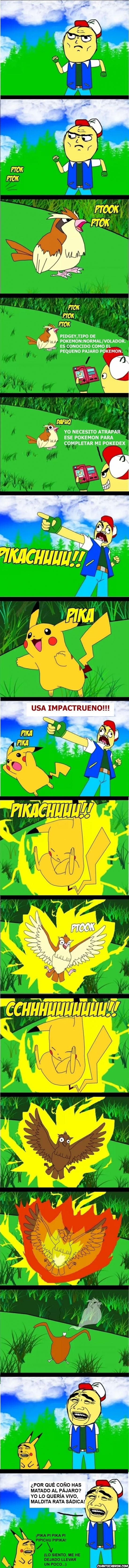 ash,capturar,entrenador,matar,pidgey,pikachu,pokemon,vivo