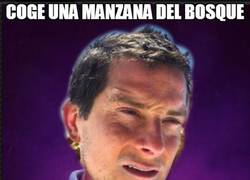 Enlace a Bad luck Bear Grylls