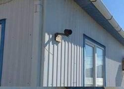 Enlace a Seguro que estas cámaras lo captan todo... ¡seguro!