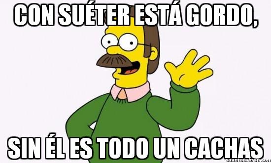Meme_otros - La extraña y cambiante consttución física de Ned Flanders