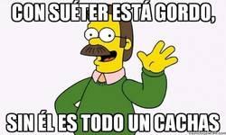 Enlace a La extraña y cambiante consttución física de Ned Flanders