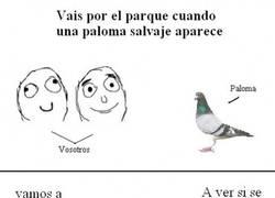 Enlace a Y por eso las palomas salen volando