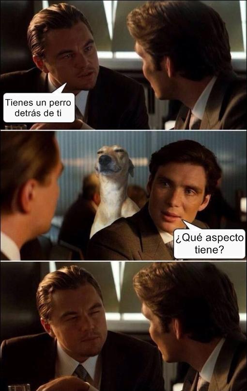 inception,leonardo di caprio meme,origen,perro,suspicious face
