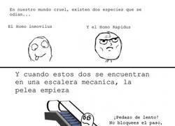 Enlace a Escaleras mecánicas