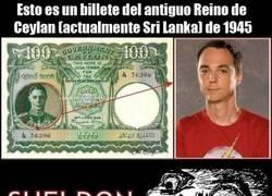 Enlace a ¿Sheldon en un billete?