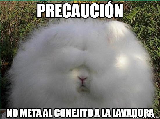 Meme_otros - ¡Conejos en la lavadora NO!